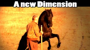 03. Hempfling - Horses and Life - The New Dimension